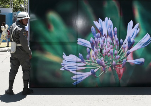 A soldier stands next to a banner with an image of a flower at the World People's Conference on Climate Change and the Defense of Life, prior to the World Climate Change Conference, in Tiquipaya, Bolivia, October 10, 2015. (Photo by David Mercado/Reuters)