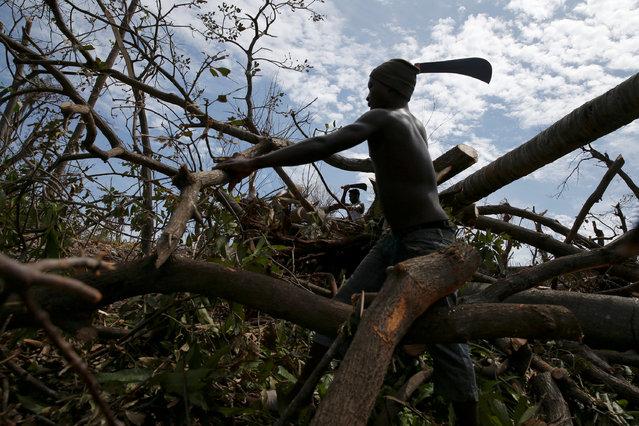 Men use machetes to cut fallen trees after Hurricane Matthew hit Jeremie, Haiti, October 10, 2016. (Photo by Carlos Garcia Rawlins/Reuters)