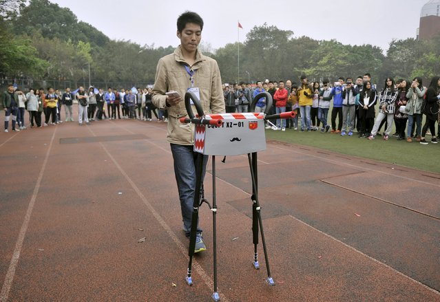 A member of a robotic team operates a quadruped robot walking on the tracks of a playground during an attempt to break the Guinness World Record for the farthest distance covered by a quadruped robot, at Chongqing University of Posts and Telecommunications in Chongqing, China, November 1, 2015. The robot kept walking for 134.03 kilometers (83 miles) and successfully broke the record. (Photo by Reuters/China Daily)