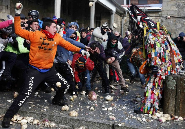 Revellers throw turnips at the Jarramplas as he makes his way through the streets while beating his drum during the Jarramplas traditional festival in Piornal, southwestern Spain, January 20, 2015. (Photo by Sergio Perez/Reuters)