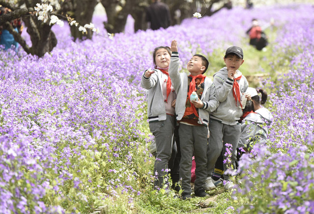 Photo taken on March 30, 2021 shows visitors enjoying pear flowers and orchid in full bloom at Santaishan Forest Park in Suqian, east China's Jiangsu Province. (Photo by Costfoto/Barcroft Media via Getty Images)