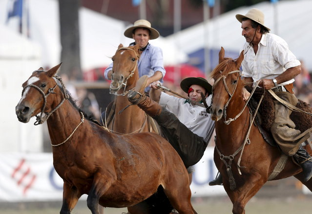 A gaucho is helped by other after riding a wild horse during the annual celebration of Criolla Week in Montevideo, March 31, 2015. (Photo by Andres Stapff/Reuters)