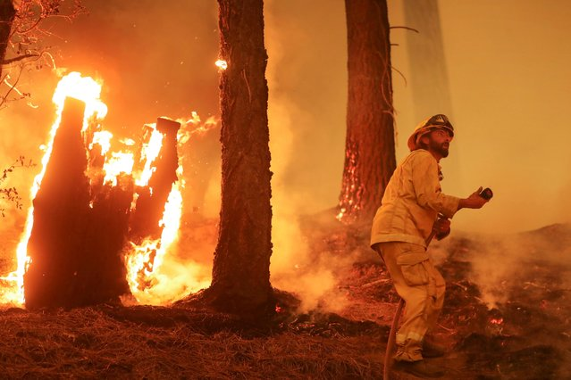 A firefighter continues to hold the line of the Dixie Fire near Taylorsville, California, U.S., August 10, 2021. (Photo by David Swanson/Reuters)