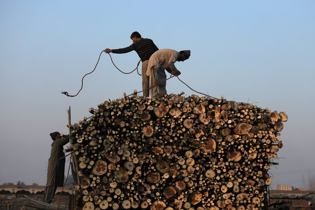 Workers tie a rope to a pile of freshly cut wood loaded on a truck in Peshawar, Pakistan January 16, 2019. (Photo by Fayaz Aziz/Reuters)