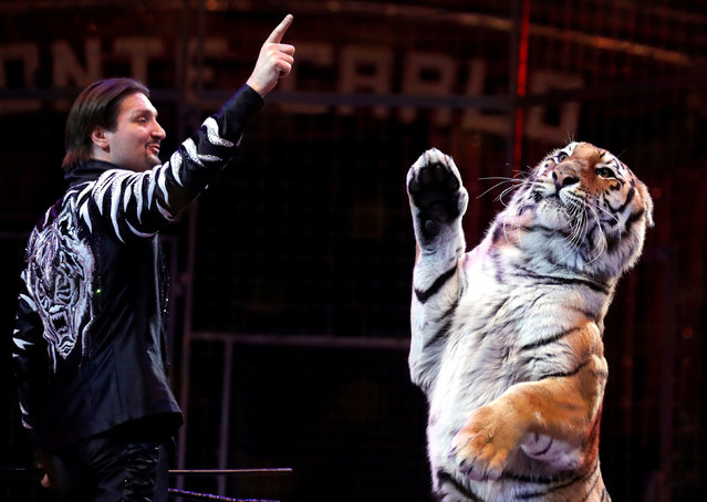 Zapashny brothers, winners of a Silver Clown award, perform with a tiger at the gala of the 41st Monte-Carlo International Circus Festival in Monaco January 24, 2017. (Photo by Eric Gaillard/Reuters)
