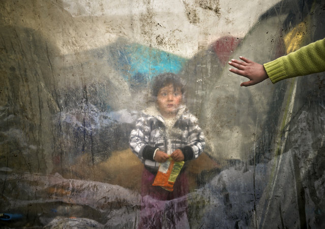 A migrant baby sits behind plastic sheets covering tents during a rainfall as a boy waves in a makeshift camp at the northern Greek border post of Idomeni, Greece, Tuesday, March 15, 2016. Hundreds of migrants and refugees walked out Monday of an overcrowded camp on the Greek-Macedonian border, determined to use a dangerous crossing to head north but were returned to Greece. (Photo by Vadim Ghirda/AP Photo)