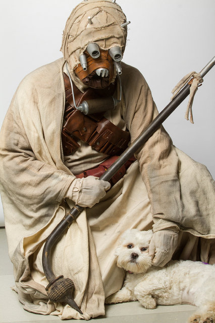 A Tusken Raider with a dog. (Photo by Rohit Saxena/Caters News)