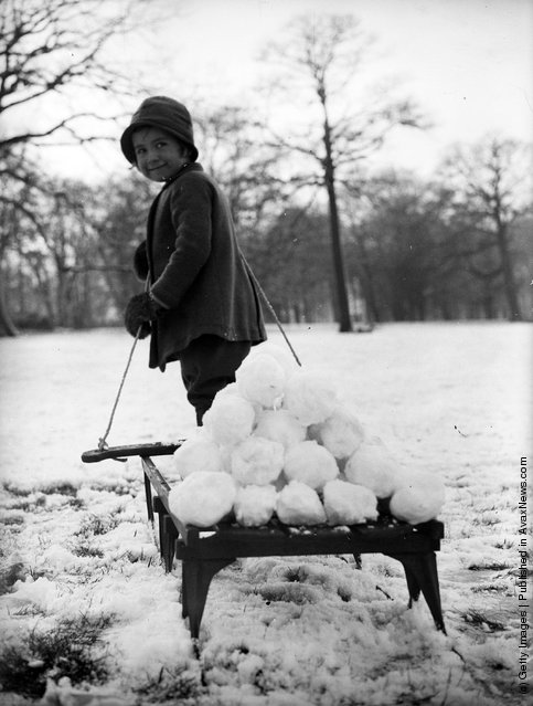 1931: Little Gwen Bearn pulls her sledge laden with snowballs across London's Hampstead Heath one snowy morning