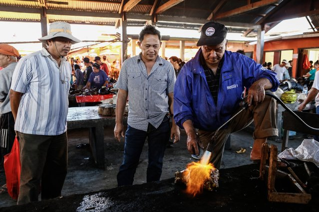 Consumers watch a man roasting snake at Langowan traditional market on August 9, 2014 in Langowan, North Sulawesi. The Langowan traditional market is famous for selling a variety of extreme food such as dogs, bats, rats, wild boar, and snakes. (Photo by Putu Sayoga/Getty Images)