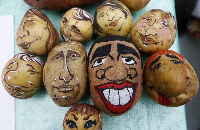 Potatoes display images of U.S. President Barack Obama (3rd R) and his Russian counterpart Vladimir Putin (3rd L), created by cartoon artists Daria Chebunina and Tatiana Mironenko, during a food fair in Krasnoyarsk, September 20, 2014. (Photo by Ilya Naymushin/Reuters)