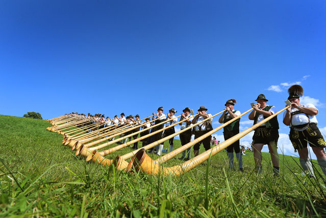 Alphorn players give a concert on August 28, 2016 in Nesselwang, southern Germany, during a mass performance of 300 alphorn blowers. (Photo by Karl-Josef Hildenbrand/AFP Photo/DPA)