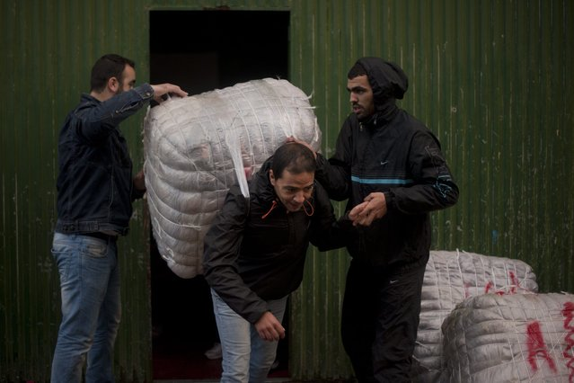 A porter (C) has a bundle loaded onto his back for transport across the El Tarajal boarder separating Morocco and Spain's North African enclave of Ceuta, in Ceuta on December 4, 2014. (Photo by Jorge Guerrero/AFP Photo)