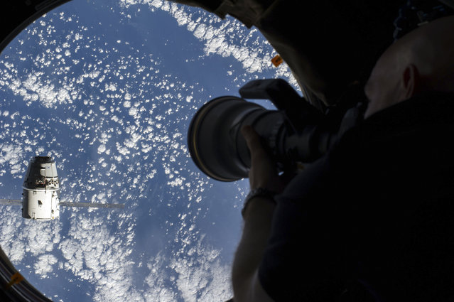 European Space Agency astronaut taking a photograph from the Cupola of the International Space Station (ISS)of the SpaceX Dragon cargo craft approaching the ISS on September 23, 2014. (Photo by NASA/SPL/Barcroft Media)