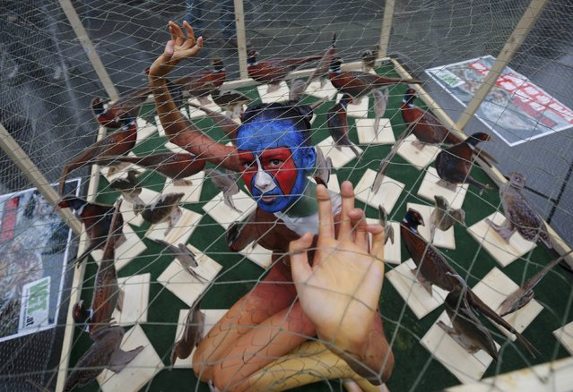 A model body painted as a pheasant sits in a cage to protest against animal breeding for hunting in Vienna, Austria, December 17, 2015. (Photo by Leonhard Foeger/Reuters)