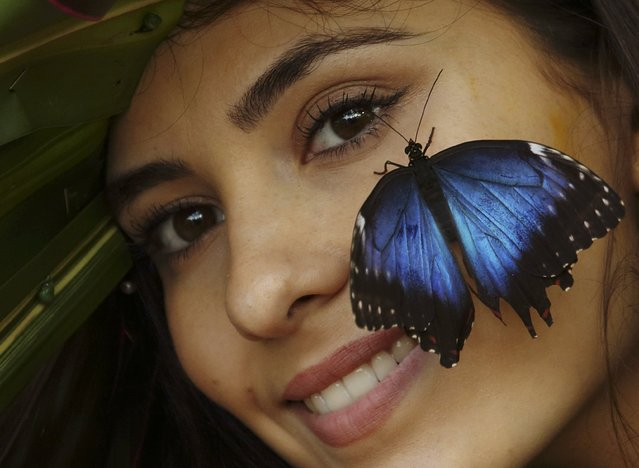 "Model Georgina Barnes poses with a blue morpho butterfly on a floral hat made and designed by florist Emma Reynolds to celebrate the opening of ""Butterflies in the Glasshouse"" at RHS garden Wisley near Woking in Britain January 15, 2016. (Photo by Luke MacGregor/Reuters)"