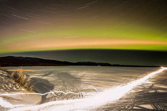 In this 30-minute exposure, the streak of four-time Iditarod champion Jeff King's headlight shows his path as he mushes from theYukon River to Kaltag, Alaska, in the Iditarod Trail Sled Dog Race, Saturday, March 14, 2015. (Photo by Loren Holmes/AP Photo/Alaska Dispatch News)