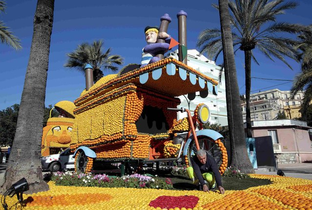 "A worker puts the final touch to a replica of a giant triporter made with lemons and oranges which shows a scene of the movie ""La Strada"" during the Lemon festival in Menton, France, February 10, 2016. (Photo by Eric Gaillard/Reuters)"