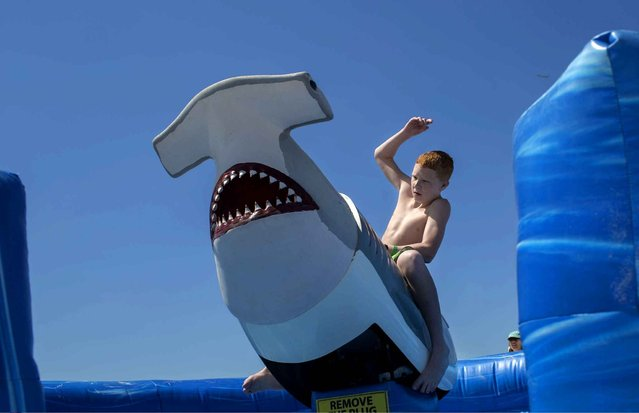 Avery Tomlinson, 13, who is from Washington Township, New Jersey, hangs on tight to Bucky the Shark outside of the Tradewinds Island Grand resort on St. Pete Beach, Fla., Monday, March 30, 2015. (Photo by John Pendygraft/AP Photo/Tampa Bay Times)