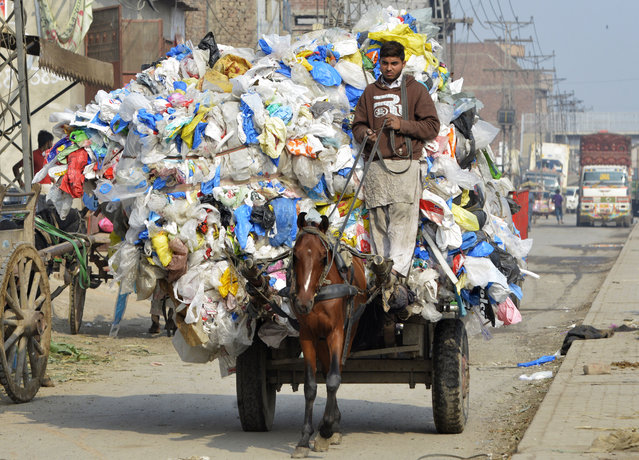 A Pakistani boy carries waste plastic bags on a horse-driven cart in Lahore on December 11, 2018. (Photo by Arif Ali/AFP Photo)