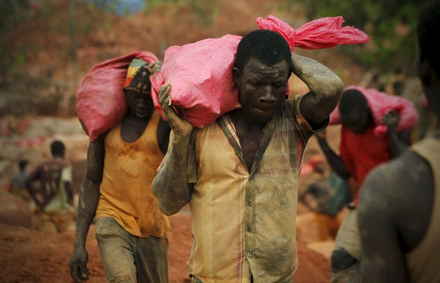 Gold prospectors carry bags of rock and earth to be sorted at a gold mine near the village of Gamina in western Ivory Coast, March 16, 2015. (Photo by Luc Gnago/Reuters)