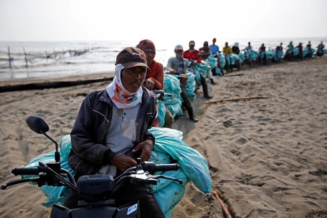 Workers carrying sacks containing sands affected by oil spill, queue to load them onto a truck at a shoreline in Karawang, West Java province, Indonesia, August 9, 2019. (Photo by Willy Kurniawan/Reuters)