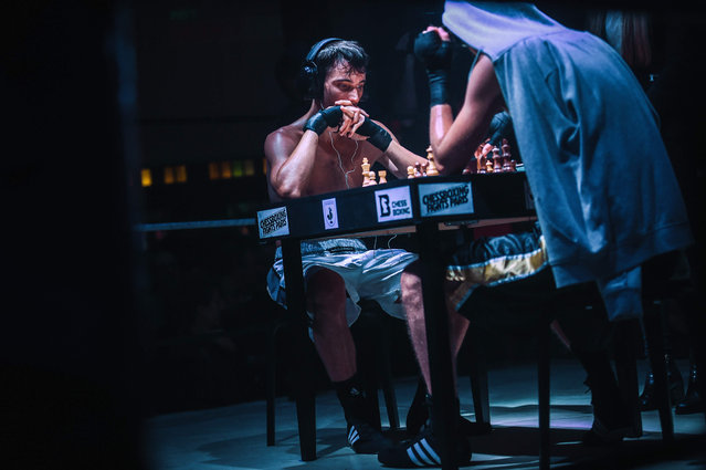 Athletes compete in a chessboxing match organised at the Cabaret Sauvage, in Paris on November 9, 2019. (Photo by Lucas Barioulet/AFP Photo)