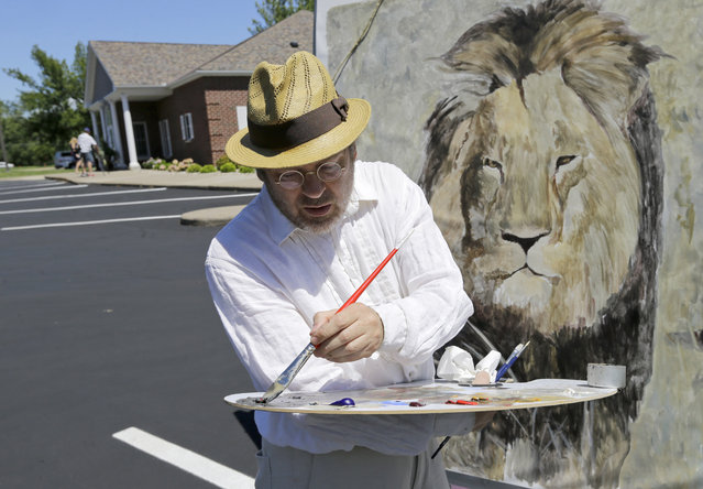 Mark Balma works on a mural of Cecil the lion outside Dr. Walter James Palmer's dental office in Bloomington, Minn., Wednesday, July 29, 2015. (Photo by Ann Heisenfelt/AP Photo)