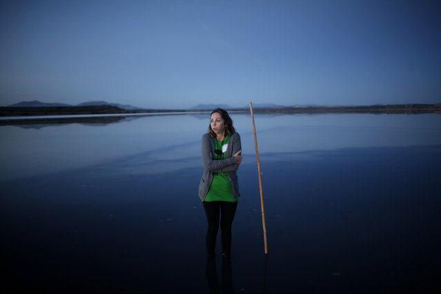 Beatriz Escudero, 30, a volunteer, huddles from the cold in a lagoon as she waits to gather flamingo chicks at dawn and place them inside a corral at the Fuente de Piedra natural reserve, near Malaga, southern Spain, July 19, 2014. Around 600 flamingos were tagged and measured before being placed in the lagoon, one of the largest colonies of flamingos in Europe, according to authorities of the natural reserve. (Photo by Jon Nazca/Reuters)