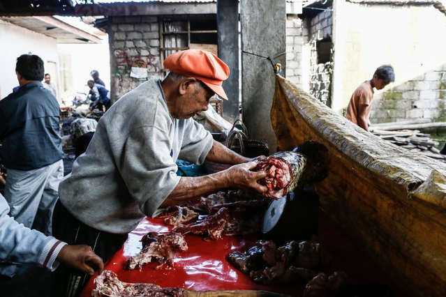 A man measures the weight of the snake meat at Langowan traditional market on August 9, 2014 in Langowan, North Sulawesi. The Langowan traditional market is famous for selling a variety of extreme food such as dogs, bats, rats, wild boar, and snakes. (Photo by Putu Sayoga/Getty Images)
