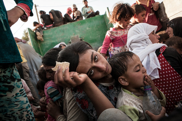Yazidian refugee Sohare Salam, 13, eats a piece of bread, the first food she has had in several days, in the back of a truck after being rescued from the mountains of Sinjar and arriving to safety in Til Kocer, Syria, photographed on August 9, 2014. Sohare and her family were stranded in the Sinjar Mountains after IS militants attacked her village, killing thousands and enslaving hundreds of women and children. (Photo by Erin Trieb/NBC News)