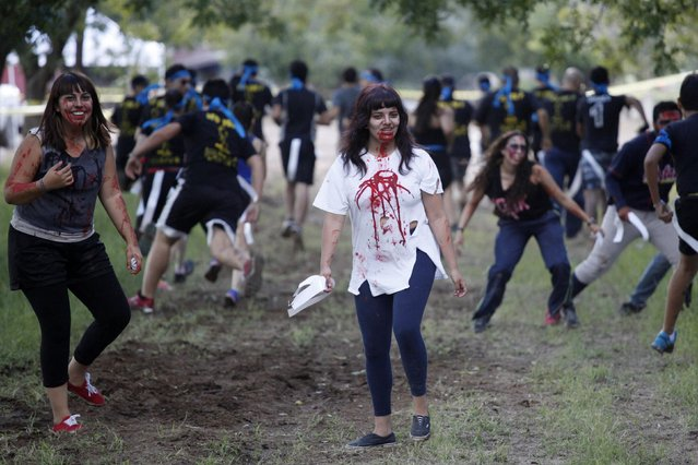 """A woman dressed as zombie a zombie participates in the """"Zombie Challenge"""" in Ciudad Juarez September 20, 2014. According to organizers, the challenge involves a five-kilometer obstacle course and people dressed as zombies are required to snatch three flags held by each participant. (Photo by Jose Luis Gonzalez/Reuters)"""