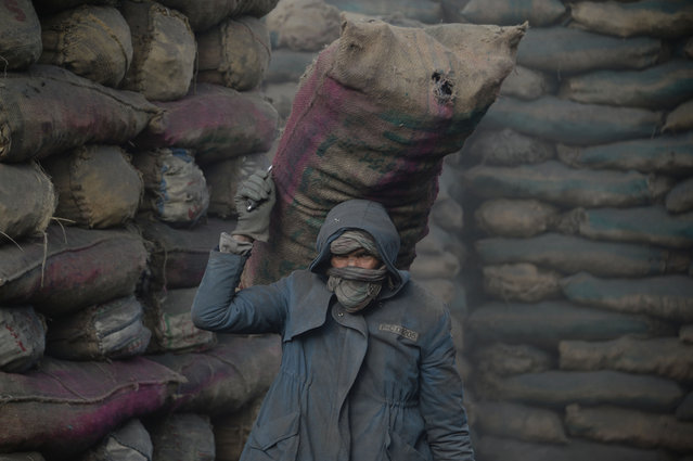 An Afghan labourer unload a sack of coal from a truck at a coal yard in Kabul on November 13, 2017. (Photo by Noorullah Shirzada/AFP Photo)