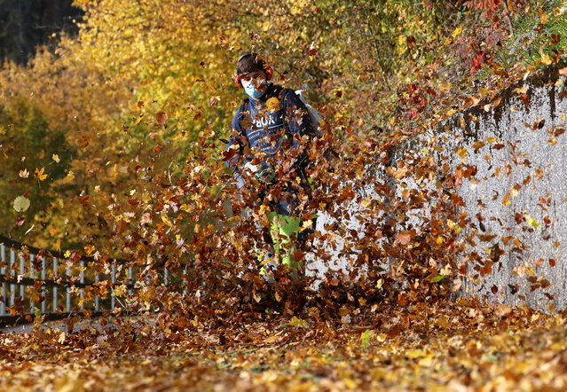 A worker wearing a protective mask uses a blower to remove leafs from a walkway during sunny autumn weather near Stallikon, Switzerland on October 27, 2020. (Photo by Arnd Wiegmann/Reuters)