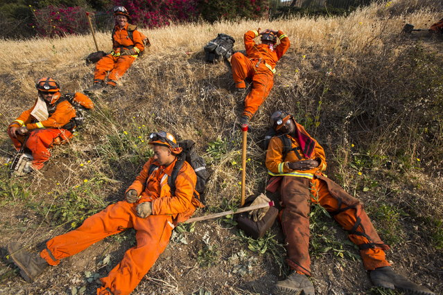 Members of handcrew take a rest along a hillside in Hidden Valley, Calif., Saturday, May 4, 2013.  High winds and withering hot, dry air was replaced by the normal flow of damp air off the Pacific, significantly reducing fire activity. (Photo by Ringo H. W. Chiu/AP Photo)