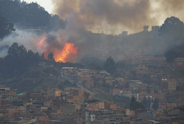 Smoke rises from a forest fire on a hill area, near neighborhoods on the south side of Bogota, Colombia February 2, 2016. (Photo by John Vizcaino/Reuters)