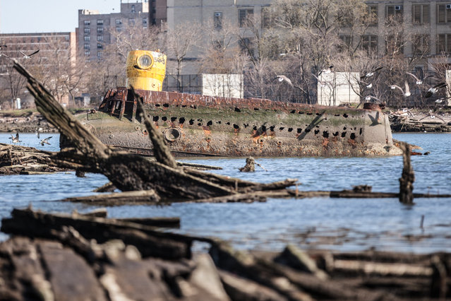 A homemade submarine lies half-submerged in the mud of Coney Island Creek in Brooklyn. The vessel became lodged in the muck shortly after embarking on a failed treasure hunting expedition in the 1970s. (Photo by Will Ellis)