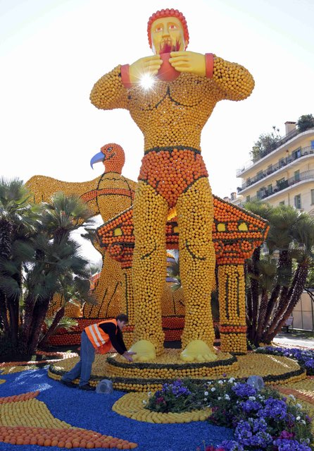 "A worker puts the final touch to a replica of a giant statue which shows a scene of the movie ""Il colosso di Rodi"" (The Colossus of Rhodes) during the Lemon festival in Menton, France, February 10, 2016. (Photo by Eric Gaillard/Reuters)"