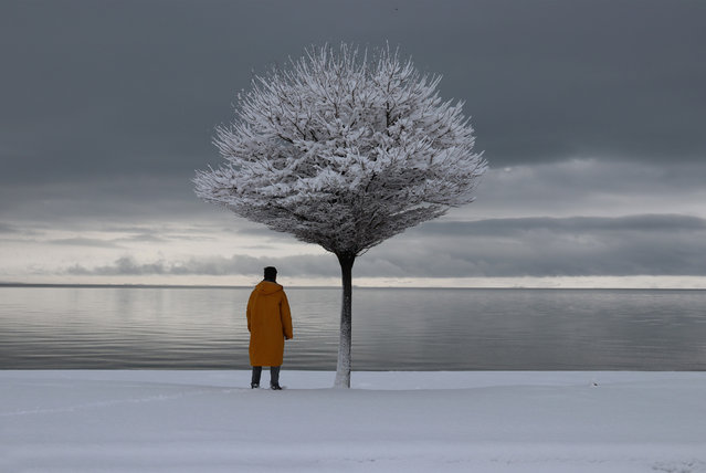 A man wearing an orange trench coat views Lake Van under a snow covered tree in Ercis district of Van on February 27, 2019. (Photo by Necmettin Karaca/Anadolu Agency/Getty Images)