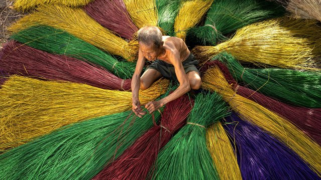 """This dyed straw is grown in Ban Dong Saen Suk, Sakon Nakhon province, Thailand on September 28, 2021. Sarawut Intharap, 38, an engineer who capture the image, said: """"The straw is entwined together to make mats used for sleeping and eating and they are sold at around £2.50 (3.40 USD) a mat at the local market"""". (Photo by Sarawut Intarob/Solent News)"""