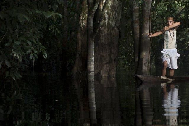 Kambeba Indian, Dream Braga (R), 18, aims his arrow in a jungle near the village Tres Unidos, Amazon state May 9, 2015. (Photo by Bruno Kelly/Reuters)