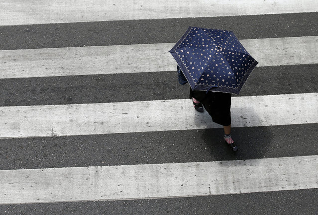 A Thai woman uses a umbrella for to shelter from the scorching sun as she across the road in a city of Bangkok, Thailand, 12 May 2015. (Photo by Narong Sangnak/EPA)
