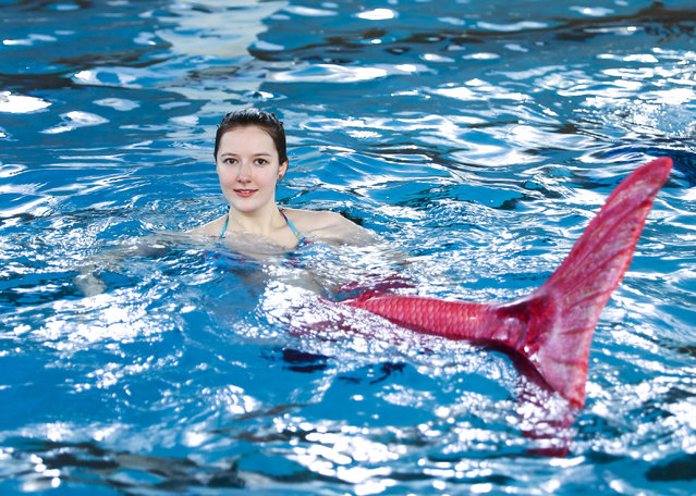 Women practice swimming with mermaid tails at AquaMermaid swimming school, a mermaid training school in Chicago, United States on March 19, 2017. (Photo by Bilgin S. Amaz/Anadolu Agency/Getty Images)