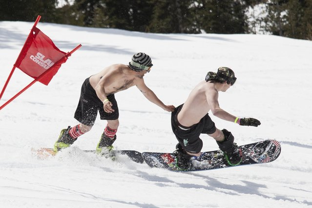 A snowboarder attempts to keep up with his competitor with a tug of the shorts, during the Bikini & Board Shorts Downhill at Crystal Mountain, a ski resort near Enumclaw, Washington April 19, 2014. Skiers and snowboarders competed for a chance to win one of four season's passes. (Photo by David Ryder/Reuters)