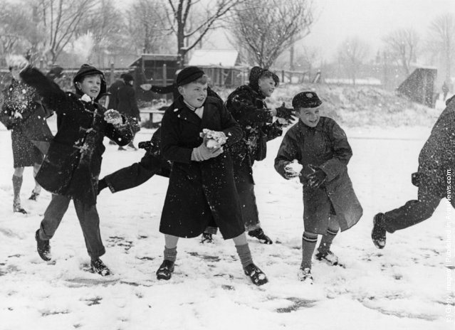 1958: A snowball fight in a school playground in Chiswick, London