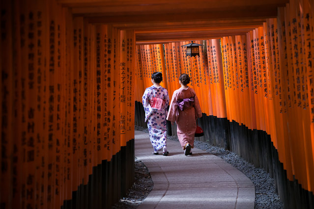 """Fushimi Inari"". Young women wearing traditional attire stroll through the torii gates of the Shinto shrine, Fushimi Inari. Photo location: Kyoto, Japan. (Photo and caption by Levi Drevlow/National Geographic Photo Contest)"