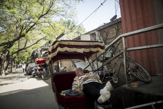 This photo taken on April 23, 2017 shows a rickshaw driver taking a rest during lunch time in Beijing. Appearing in China at the end of the 19th century, rickshaws originally had two wheels and were pulled by their driver on foot, with passengers seated at the back. Today, most of the vehicles are tricycles – some still have pedals and are propelled by physical force, but the majority are equipped with electric or gas engines. (Photo by Fred Dufour/AFP Photo)