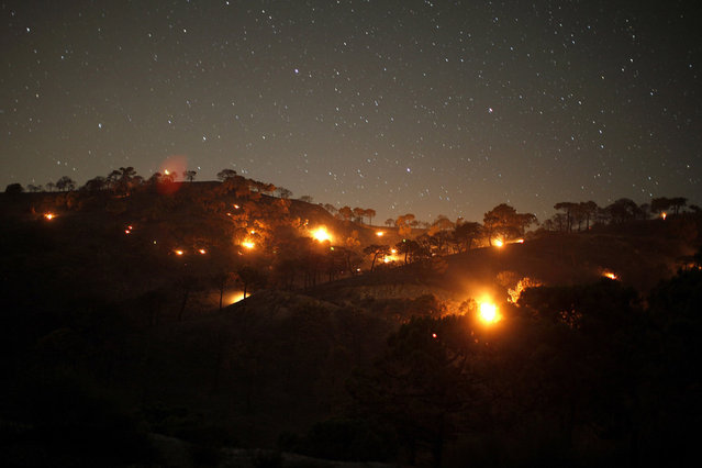 Small forest fires are pictured between pine trees at night at Sierra de Tejeda nature park, on a burnt mountain from El Collado mountain pass, near the town of Competa, near Malaga, southern Spain early June 30, 2014. A wildfire forced the evacuation of 600 people from their homes, most of the evacuated were resident tourists, as two houses were razed, according to local media. Picture taken using long exposure. (Photo by Jon Nazca/Reuters)