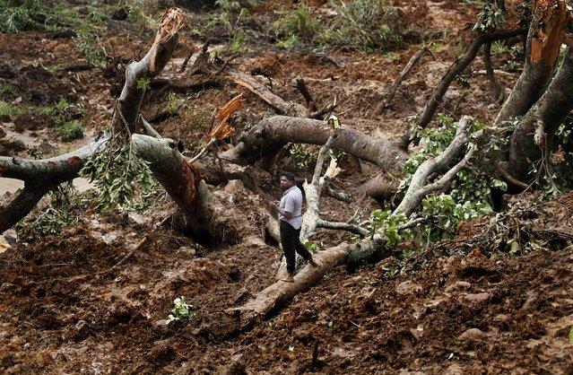 A man stands on a destroyed tree at the site of a landslide at the Koslanda tea plantation near Haldummulla October 30, 2014. (Photo by Dinuka Liyanawatte/Reuters)
