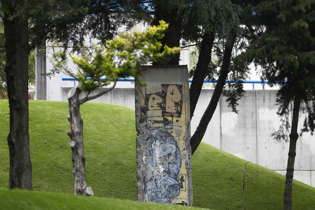 A piece of the Berlin Wall is seen in a garden at the Alexander Von Humboldt German School in Mexico City, September 10, 2014. (Photo by Edgard Garrido/Reuters)