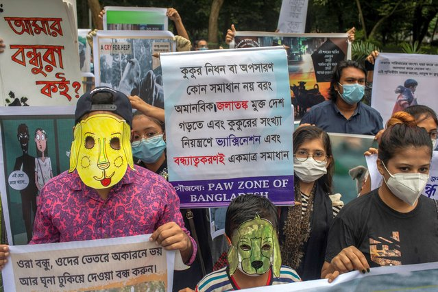 Protesters wearing dog masks while holding placards during the demonstrations in Dhaka, Bangladesh on September 25, 2020. Animal lovers, with banners, festoons, placards and posters, demand immediate stop to the illegal relocation of Dhaka stray dogs and protest against the decision of Dhaka city corporation authorities to relocate stray dogs out of the city. (Photo by Sazzad Hossain/SOPA Images/Rex Features/Shutterstock)